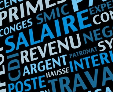 La nouvelle année est synonyme de modifications à prévoir en paie avec l'entrée en vigueur de nombreuses mesures adoptées en fin d'année. Loi de financement de la sécurité sociale, loi de finances pour 2014, décrets et arrêtés... Voici les principales dispositions qui impacteront la paye pour cette nouvelle année.