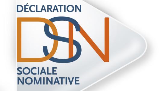 La loi relative à la simplification du droit et à l'allègement des démarches administratives a créé la Déclaration Sociale Nominative (DSN). Cette déclaration a vocation à rassembler l'ensemble des déclarations faites par les entreprises en une seule déclaration mensuelle.