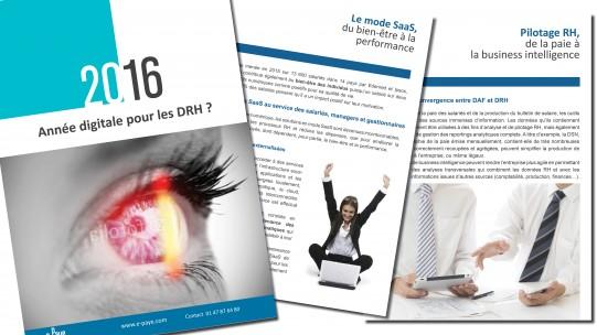 Livre blanc 2016 année digitale pour les DRH