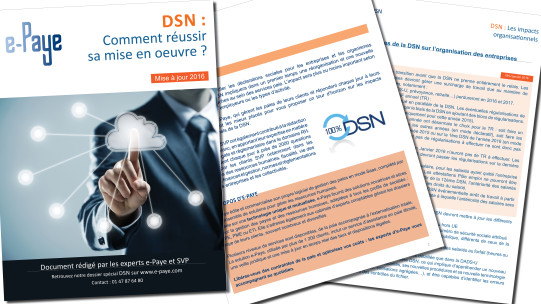 Livre Blanc DSN 2016
