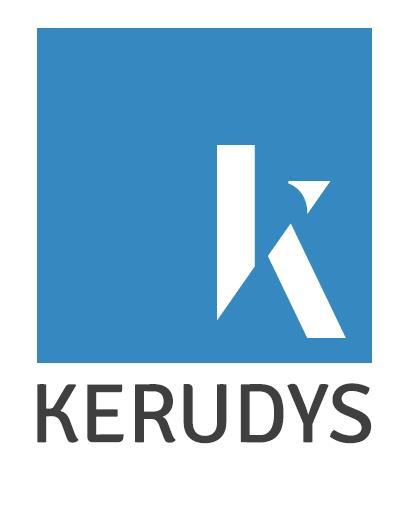 Le Groupe Kerudys (ex Groupe SVP) propose une offre de services complémentaires : aide à la décision, gestion RH et paie, conseil RH et formation professionnelle