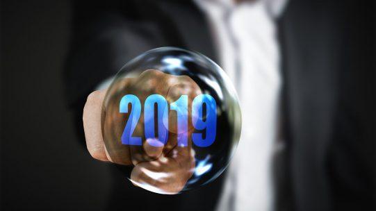 En janvier 2019 débutera le dispositif de prélèvement de l'impôt sur le revenu à la source. Sans ignorer à quoi ce nouveau dispositif correspond, beaucoup d'employeurs se posent encore des questions quant à leur rôle vis à vis des différents interlocuteurs dans la mise en place de cette nouvelle norme.