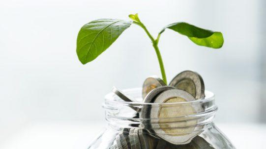 L'épargne salariale est un processus d'épargne collectif instauré dans certaines entreprises. La loi prévoit différents dispositifs d'épargne salariale : la prime d'intéressement, la prime de participation, le plan d'épargne entreprise (PEE) et le plan d'épargne retraite d'entreprise collectif (PERECO).